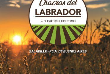 Lotes en Saladillo, CHACRAS DEL LABRADOR 90% vendido