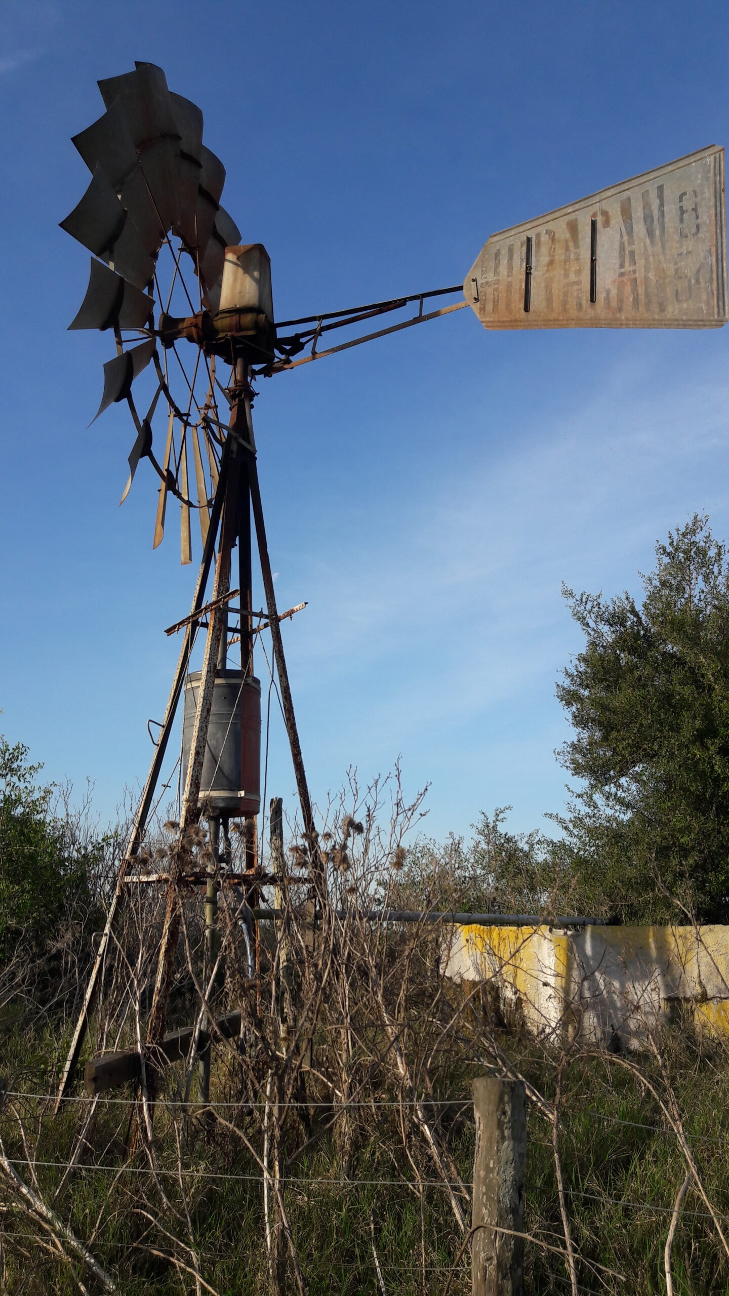 CAMPO en Venta en Lezama 91 hectáreas