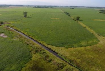 Campo Agrícola en Junín.