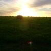 Campo 183 Hectáreas en Chascomús – 70% Agrícola