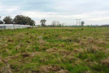 Quinta 4 hectáreas para siembra en La Plata