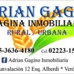 Adrian Gagino Imagina Inmobiliaria